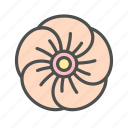 blossom, flower, hibiscus, nature, spring icon