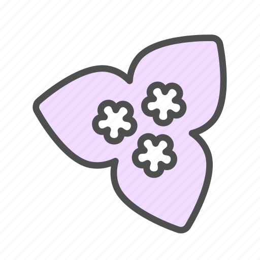blossom, bougainvillea, flower, nature, spring icon