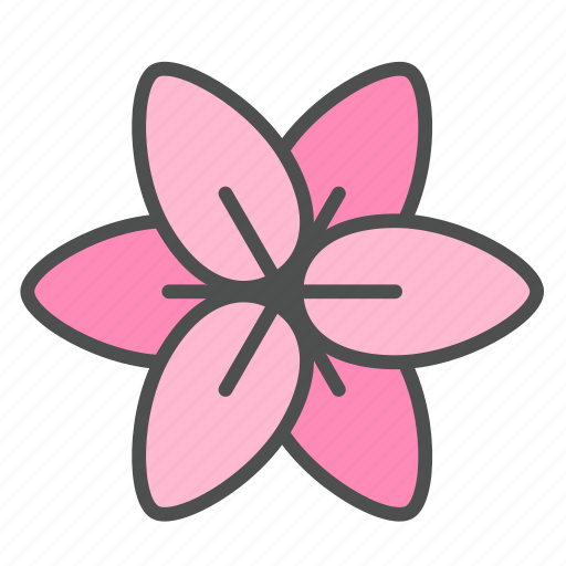 blossom, flower, lily, nature, spring icon