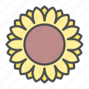 blossom, flower, nature, spring, sunflower icon