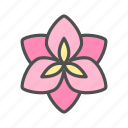amaryllis, blossom, flower, nature, spring icon