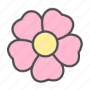 blossom, flower, nature, rose, spring, wild icon