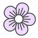 blossom, flower, geranium, nature, spring icon