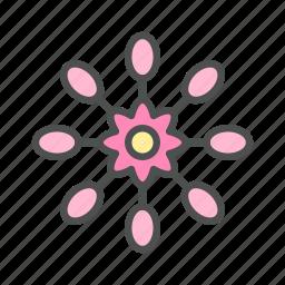 african, blossom, daisy, flower, nature, osteospermum, spring icon