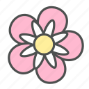 blossom, dahlia, flower, nature, spring icon