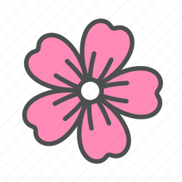 blossom, flower, lavatera, nature, spring icon