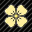 blossom, flower, nature, primrose, spring, sundrop icon