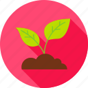 cultivation, garden, leaf, nature, plant, spring, sprout icon