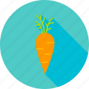 carrot, farm, food, garden, natural, vegan, vegetable icon