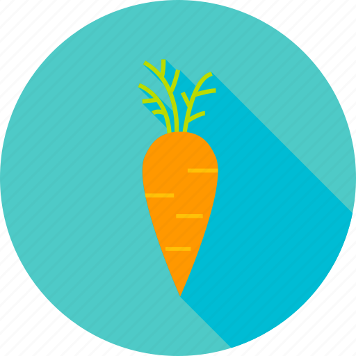 Carrot, farm, food, garden, natural, vegan, vegetable icon - Download on Iconfinder