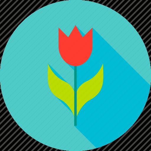 Flower, garden, gardening, nature, plant, spring, tulip icon - Download on Iconfinder