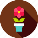 blossom, flower, flower pot, garden, nature, plant, pot icon