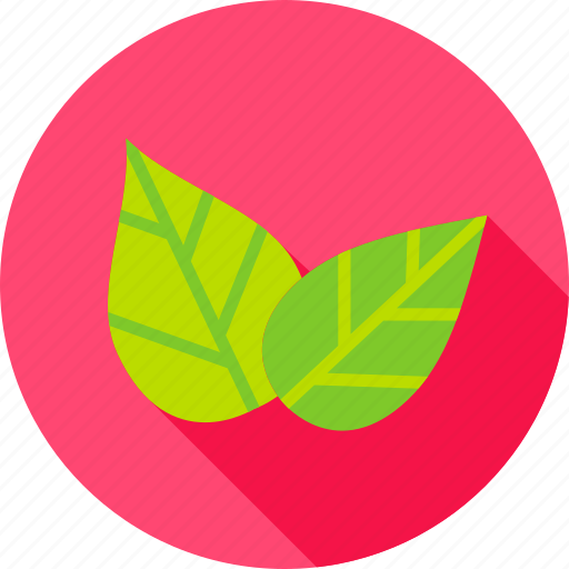 foliage, garden, greenery, leaf, nature, plant, spring icon