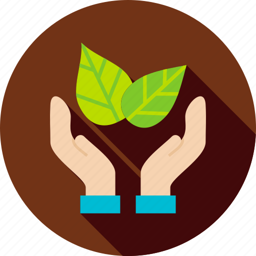 foliage, garden, hand, leaf, nature, plant, spring icon