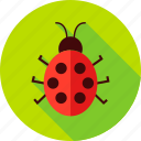 bug, garden, insect, lady-beetle, lady-cow, ladybird, ladybug icon