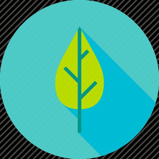 foliage, garden, greenery, leaf, natural, plant, spring icon