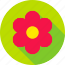 blossom, flower, garden, nature, plant, spring, summer icon
