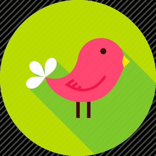 animal, bird, fowl, garden, nature, outdoor, spring icon
