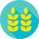 agriculture, corn, cultivation, garden, nature, plant, wheat icon