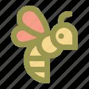bee, bug, honey, spring