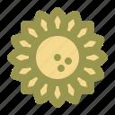 sunflower, spring, flower, plant