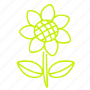 flower, nature, plant, spring, sunflower icon
