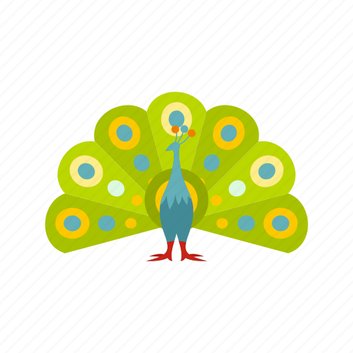 beautiful, beauty, bird, feather, nature, peacock, tail icon