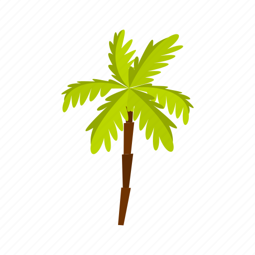 leaf, natural, nature, palm, plant, tree, tropical icon