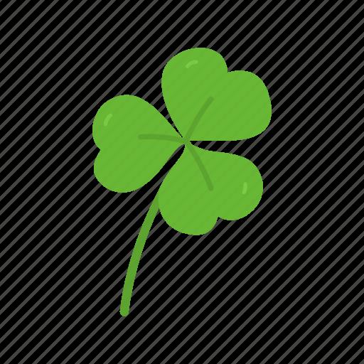 clover, feast, flower, leaf, lucky clover, st.patrick feast, three leaf clover icon