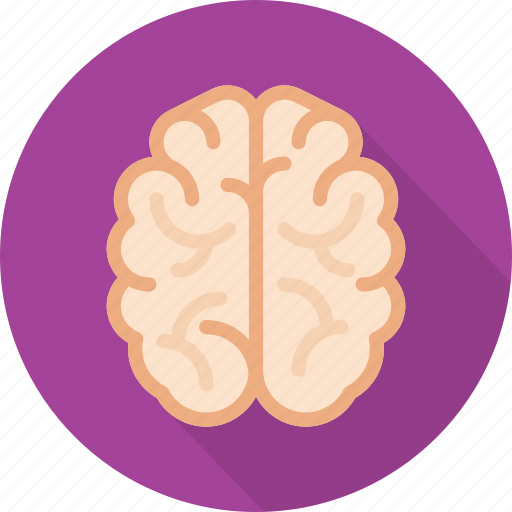 brain, creative, genius, idea, mind, smart, think icon