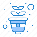 gardening, growing, plant, pot