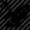 campaign launch, mission achievement, new project, special campaign, special mission icon