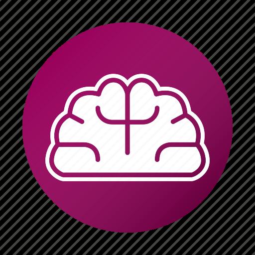 brain, education, school, study, think icon