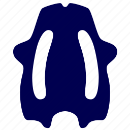 board, kickboard, sport, water icon