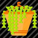 cactus, hanging, plant, pot, succulent, vas