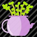 cactus, jade, plant, pot, succulent, vas