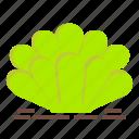 cactus, flower, long, plant, pot, succulent, vas