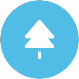 christmas tree, fir tree, forest, nature, pine, pine tree, tree icon
