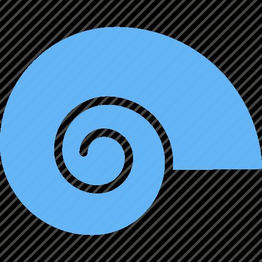animal, beach, shell, snail icon