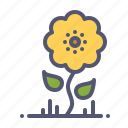 bloom, blossom, flower, nature, spring, summer, sunflower icon