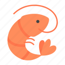animal, food, nature, seafood, sealife, shellfish, shrimp icon
