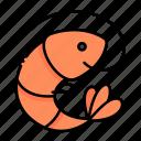 animal, food, nature, seafood, sealife, shellfish, shrimp