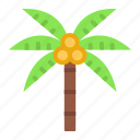 beach, coconut tree, holiday, islands, summer, vacation, weather