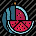 watermelon, organic, vegan, diet, fruit, healthy, vegetable