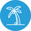 beach, coconut, drink, summer, tree, vacation