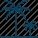 summer, island, beach, palm, tree