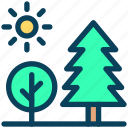 summer, park, forest, nature, tree, sun