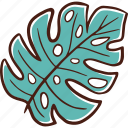 summer, nature, holiday, spring, beach, leaf, monstera