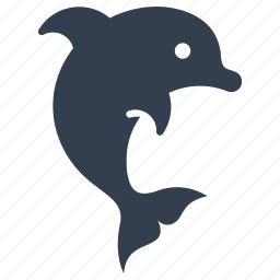 animal, beach, dolphin, fish, jump, ocean, playing, presentation, sea, show, summer, vacation icon