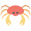 cancer, cancer zodiac, crab, food, seafood icon